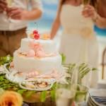 6_Hochzeitstorte-Seychellen-Seesterne-Muscheln