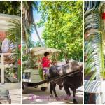 LaDigue_Beach-Wedding_ox-cart